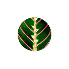 Exotic Green Leaf Golf Ball Marker (4 Pack) by Vaneshart