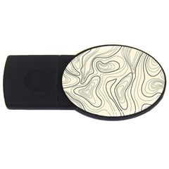 Topographic Lines Background Salmon Colour Shades Usb Flash Drive Oval (2 Gb)