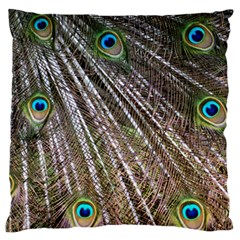 Peacock Feathers Pattern Colorful Standard Flano Cushion Case (one Side) by Vaneshart
