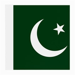 Flag Of Pakistan Medium Glasses Cloth by abbeyz71