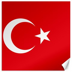 Vertical Flag Of Turkey Canvas 12  X 12  by abbeyz71