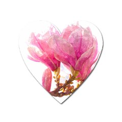 Magnolia Roze Aquarel Watercolor Heart Magnet by picsaspassion