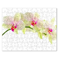 Phalenopsis Orchid White Lilac Watercolor Aquarel Rectangular Jigsaw Puzzl by picsaspassion