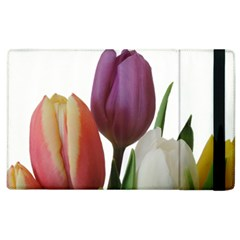 Tulips Spring Bouquet Apple Ipad 2 Flip Case by picsaspassion