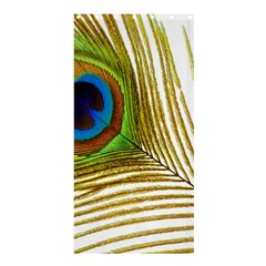 Peacock Feather Plumage Colorful Shower Curtain 36  X 72  (stall)