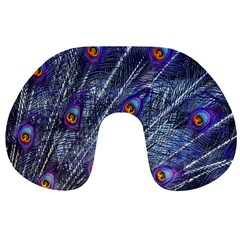 Peacock Feathers Color Plumage Blue Travel Neck Pillow