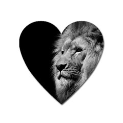 African Lion Heart Magnet by goljakoff