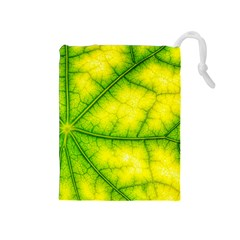 Photosynthesis Leaf Green Structure Drawstring Pouch (medium)