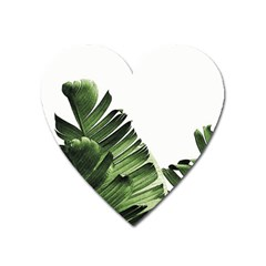 Banana Leaves Heart Magnet by goljakoff
