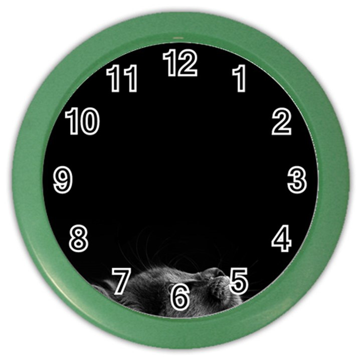 Who is there? Color Wall Clock