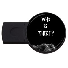 Who Is There? Usb Flash Drive Round (2 Gb)