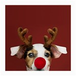 Christmass deer Medium Glasses Cloth Front