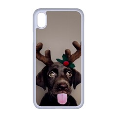 Christmas Dog Iphone Xr Seamless Case (white)