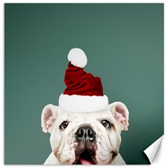 Santa Dog Canvas 12  X 12