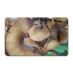 Close Up Mushroom Abstract Magnet (rectangular) by Fractalsandkaleidoscopes