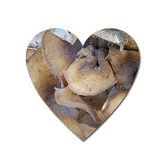 Close Up Mushroom Abstract Heart Magnet by Fractalsandkaleidoscopes