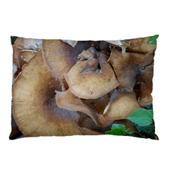 Close Up Mushroom Abstract Pillow Case (two Sides) by Fractalsandkaleidoscopes