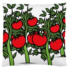 Tomato Garden Vine Plants Red Large Cushion Case (two Sides)