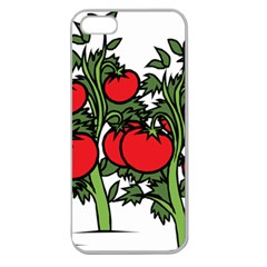 Tomato Garden Vine Plants Red Apple Seamless Iphone 5 Case (clear) by HermanTelo