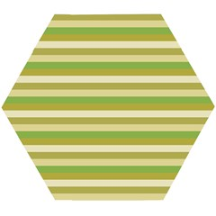 Stripey 11 Wooden Puzzle Hexagon