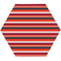 Stripey 13 Wooden Puzzle Hexagon