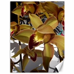 Orchids  1 1 Canvas 36  X 48  by bestdesignintheworld