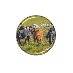 Cows At Countryside, Maldonado Department, Uruguay Hat Clip Ball Marker by dflcprints