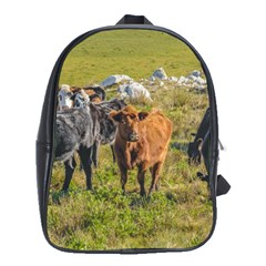 Cows At Countryside, Maldonado Department, Uruguay School Bag (large) by dflcprints