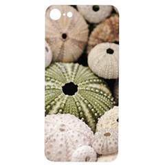 Sea Urchins Iphone 7/8 Soft Bumper Uv Case