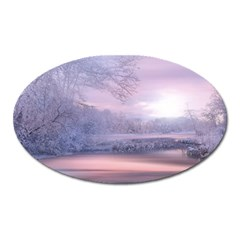 Nature Landscape Winter Oval Magnet
