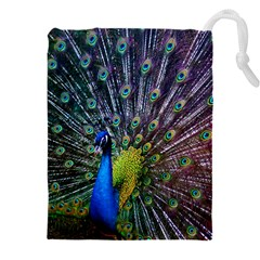 Peacock Colors Bird Colorful Drawstring Pouch (3xl)