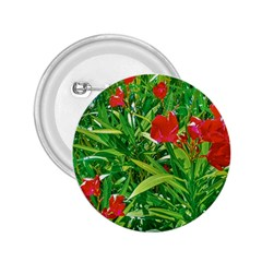 Red Flowers And Green Plants At Outdoor Garden 2 25  Buttons by dflcprintsclothing