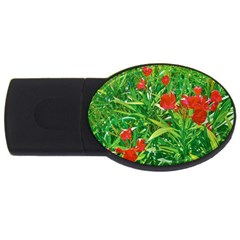 Red Flowers And Green Plants At Outdoor Garden Usb Flash Drive Oval (2 Gb) by dflcprintsclothing