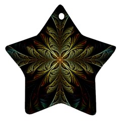 Fractal Art Abstract Pattern Ornament (star)