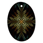 Fractal Art Abstract Pattern Oval Ornament (Two Sides) Back