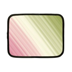 Pink Green Netbook Case (small)