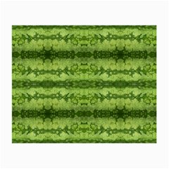 Watermelon Pattern, Fruit Skin In Green Colors Small Glasses Cloth