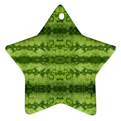 Watermelon Pattern, Fruit Skin In Green Colors Star Ornament (two Sides)