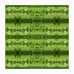 Watermelon Pattern, Fruit Skin In Green Colors Medium Glasses Cloth