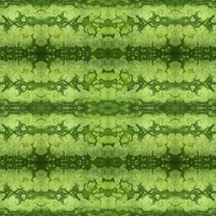 Watermelon Pattern, Fruit Skin In Green Colors Magic Photo Cube