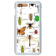 Insects Seamless Pattern Samsung Galaxy S10e Seamless Case (white)