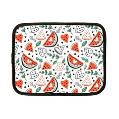 Seamless-vector-pattern-with-watermelons-mint Netbook Case (small) by Vaneshart