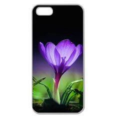 Floral Nature Apple Seamless Iphone 5 Case (clear)