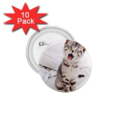 Laughing Kitten 1 75  Buttons (10 Pack) by Sparkle