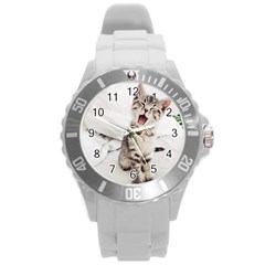 Laughing Kitten Round Plastic Sport Watch (l)