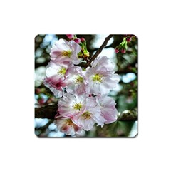 Pinkfloral Square Magnet by Sparkle