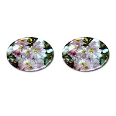 Pinkfloral Cufflinks (oval) by Sparkle