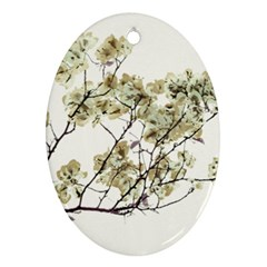 Photo Illustration Flower Over White Background Ornament (oval)