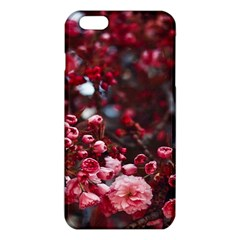 Red Floral Iphone 6 Plus/6s Plus Tpu Case by Sparkle