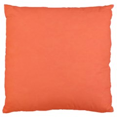 Appreciating Apricot Large Cushion Case (two Sides)